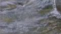 Wonderful Winter Music Video