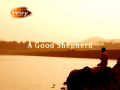 A Good Shepherd (The Way 263 - Photo Essay by Rev.Dr.Jaerock Lee)