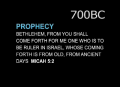 Prophecy fulfilled in Jeus