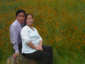 Holy Marriage, Holy Dedication (HMong)
