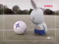 Bunnies Can't Play Soccer