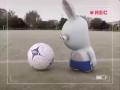 Bunnies Can't Play Soccer