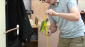 Parrot Does 20 Tricks In Two Minutes