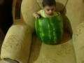Baby chows down on large watermelon