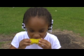 Kids Corn Commercial - Pathway to Peace