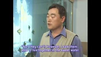 Power of God(1) - (Rev.Dr.Jaerock Lee - Manmin Central Church)