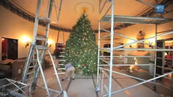 Putting up the White House Christmas Tree
