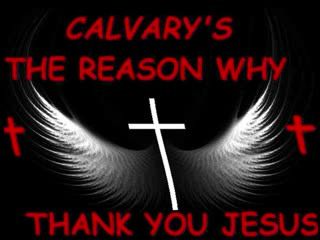 Calvary's The Reason Why