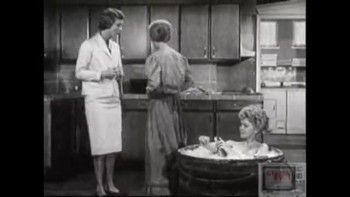 The Beverly Hillbillies: S1 E3, Meanwhile, Back at the Cabin