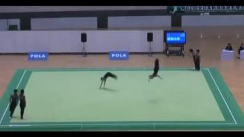 Beautiful Japanese Syncronized Gymnastics