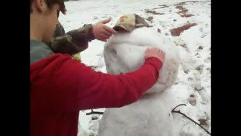The Snowman with a Hairline