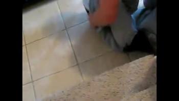 Wiener Dog Gets Caught In Sweatshirt