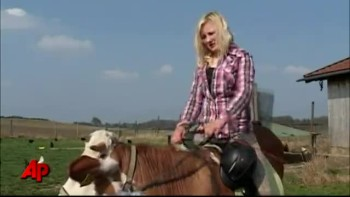 Udderly Amazing - Girl Rides Cow