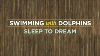 Swimming with Dolphins - Sleep to Dream (Slideshow with Lyrics)