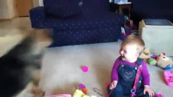 Baby laughs at dog and bubbles