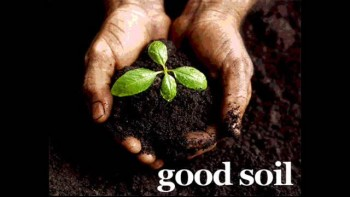 You Shine by Good Soil