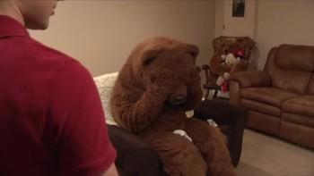 Bear and Jim - Hibernate