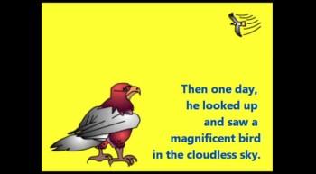 Little Eaglet