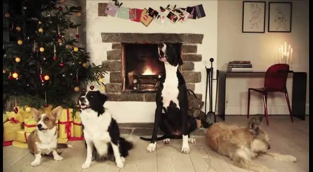 Jingle Barks: Dogs Barking Jingle Bells - Cute Videos