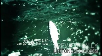 Drift - by Lifetone Media