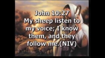 As Sheep, We Need A Shepherd