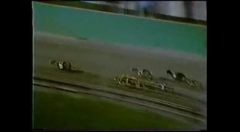 1985 World Classic at Hollywood Florida Greyhound Track