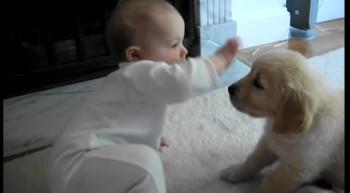 Cute alert! Baby, meet puppy. Puppy, meet baby.