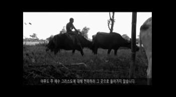 한국 영화
