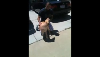 Dog & U.S. Airman Homecoming - Heartwarming!