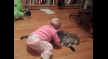It doesn't get cuter than this...baby cuddles cat!