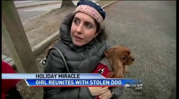 Christmas Miracle: Stolen Pup Returned to Owners