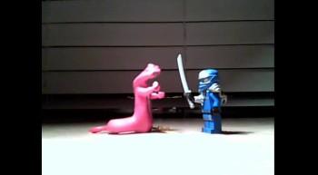 snake vs. ninja