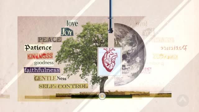 Fruit of the Spirit - An illustration - Ministry Videos