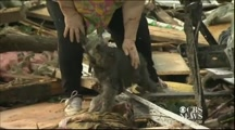 Woman Reunited With Her Dog After Tornado - God Answered a Prayer !