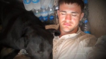 Marine is Reunited with the Dog That Saved His Life in Afghanistan