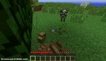 Minecraft Randomness Ep.1