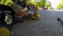 Tiny Kitten Brought Back To Life By Hero Firefighter