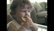 Babies Tasting Lemons for the Very First Time - Awwww