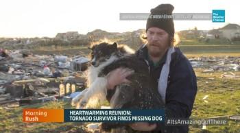 Man Finds Dog ALIVE after Tornado