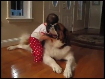 The Hug Between these Best Buddies Will Make Your Day!