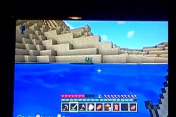 Minecraft Survival Video Part 2