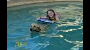 Amazing Compilation of Dogs Rescuing People and Other Animals!