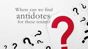 Xulon Press bookBIBLICAL ANTIDOTES to Life's Toxins|Glenn K. Gunderson Jr. with Kathy Gisi Wimbish