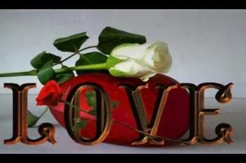 Love Remains ♥ Daniel Kirkley