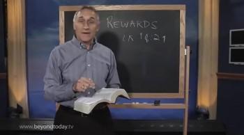 BT Daily -- Rewards Program