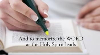 Xulon Press bookMore Than Just Words|Reverend Gordon K. Davis