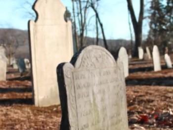 The Deadbeat Club Book Trailer