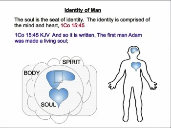 The Nature of Man 2