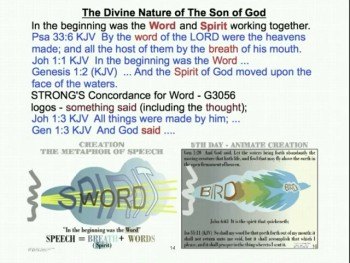 The Divine Nature 2