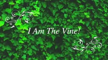 I Am The Vine!